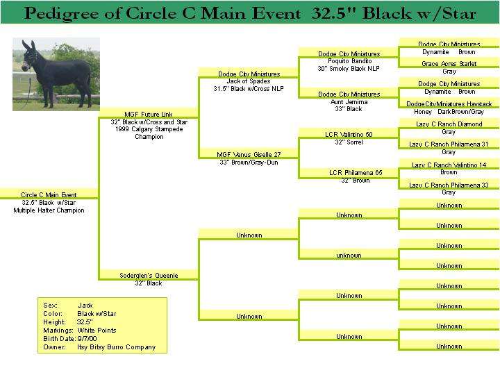 Pedigree for Circle C Main Event